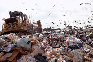 Offsets, Biodiversity and Waste
