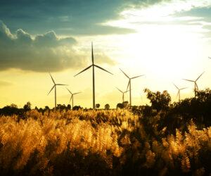 NBI Quick Brief: South Africa's Carbon Tax Bill