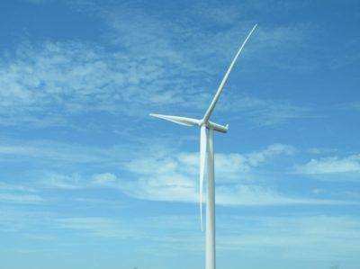 pexels-wind power - website