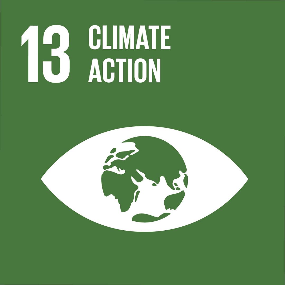 E_SDG-goals_icons-individual-rgb-13