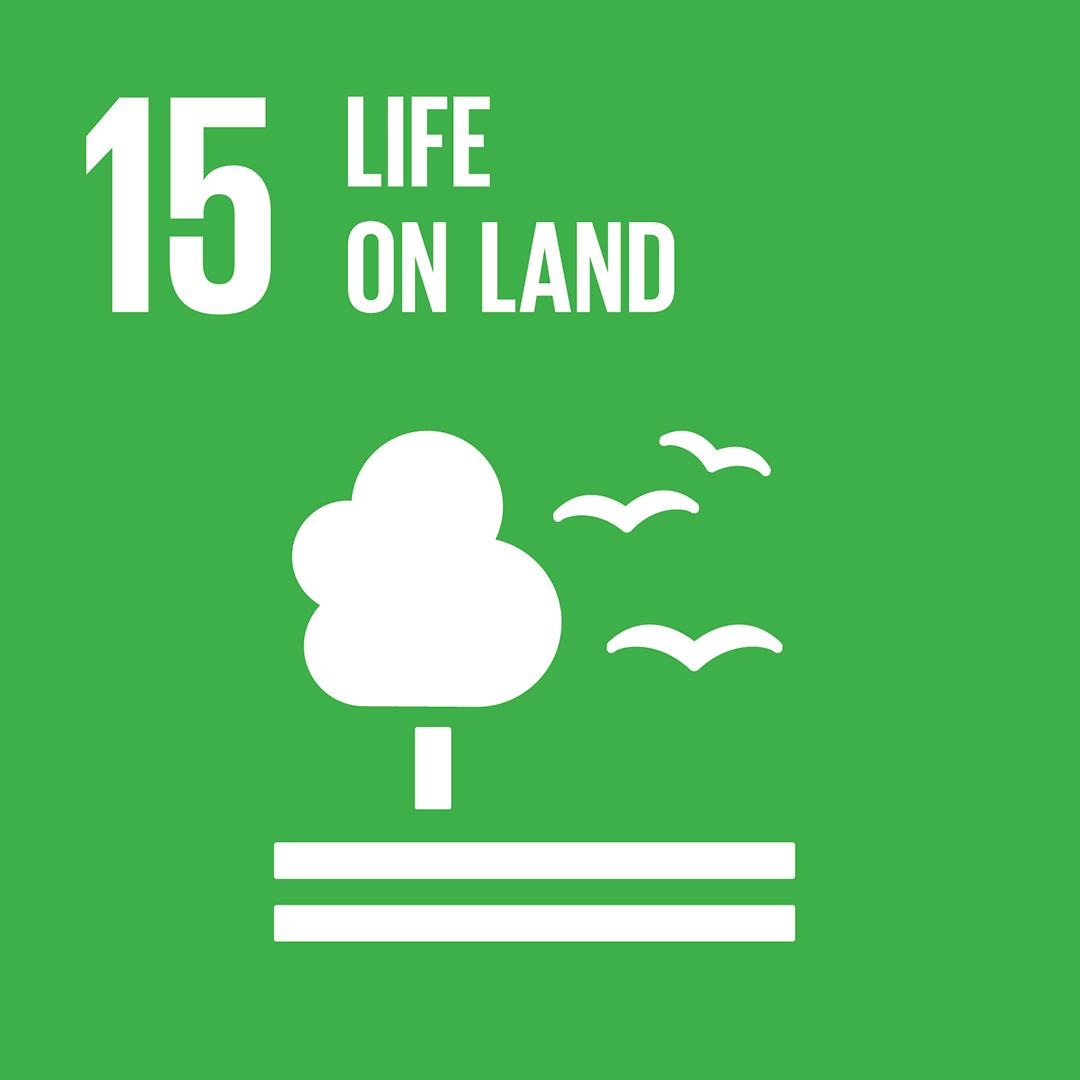 E_SDG-goals_icons-individual-rgb-15