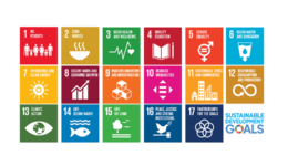 SDG - website