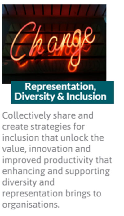 representation-diversity-and-inclusion