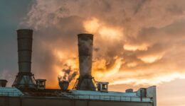 New Website CDP air-pollution