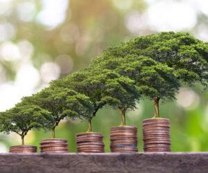 NBI Newsflash:Enabling Economic Inclusion | Measuring Impact
