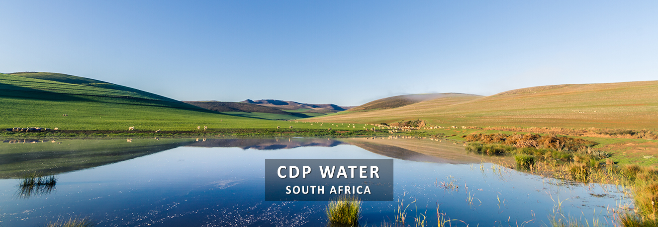 CDP-Water