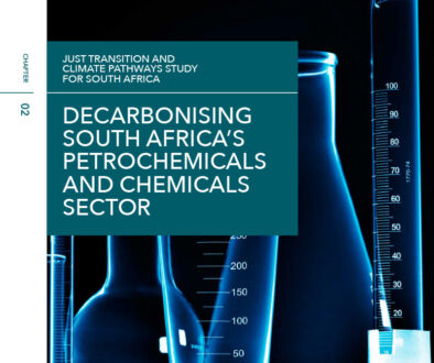 NBI-Chapter-2-Decarbonising-South-Africa's-Petrochemicals-and-Chemicals-Sector